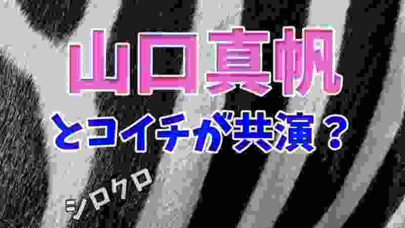 【シロクロ】 山口真帆とコイチが共演?