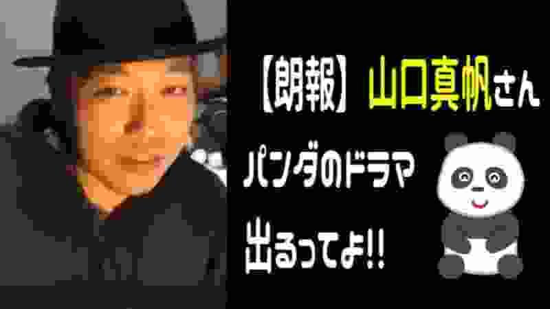 【朗報】 山口真帆さん、パンダのドラマ出るってよ!