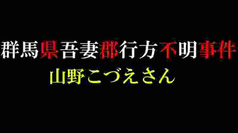 【未解決】群馬県吾妻郡行方不明【山野こづえさん】