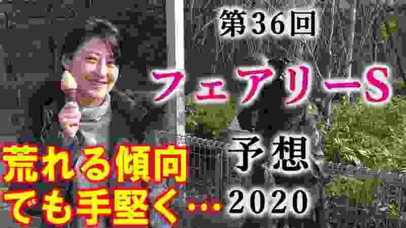 【競馬】フェアリーS 2020 予想(すでに大人びた馬がいますよ!) ヨーコヨソー
